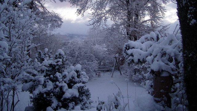 Der Blick von der Terrasse meines Elternhauses in den hinteren Teil des Gartens.