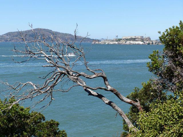 Alcatraz_50