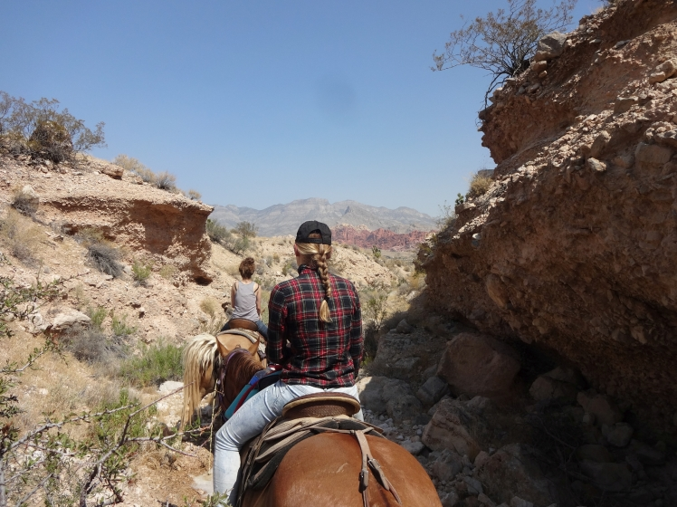 Red Rock Canyon_20