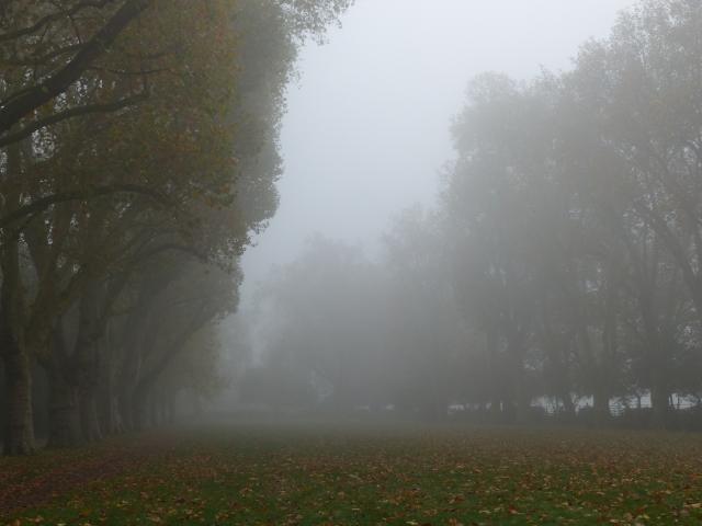 London_Parks_35