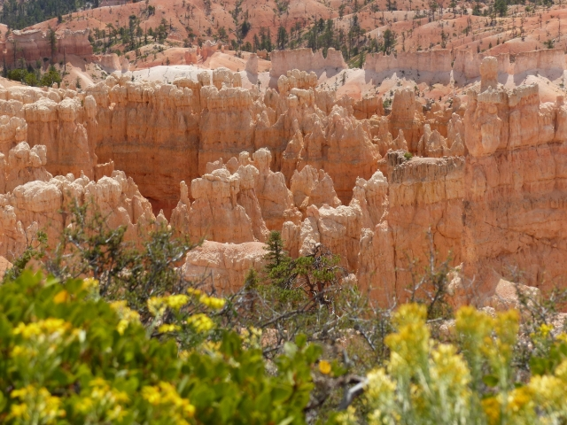 Bryce Canyon_colors6
