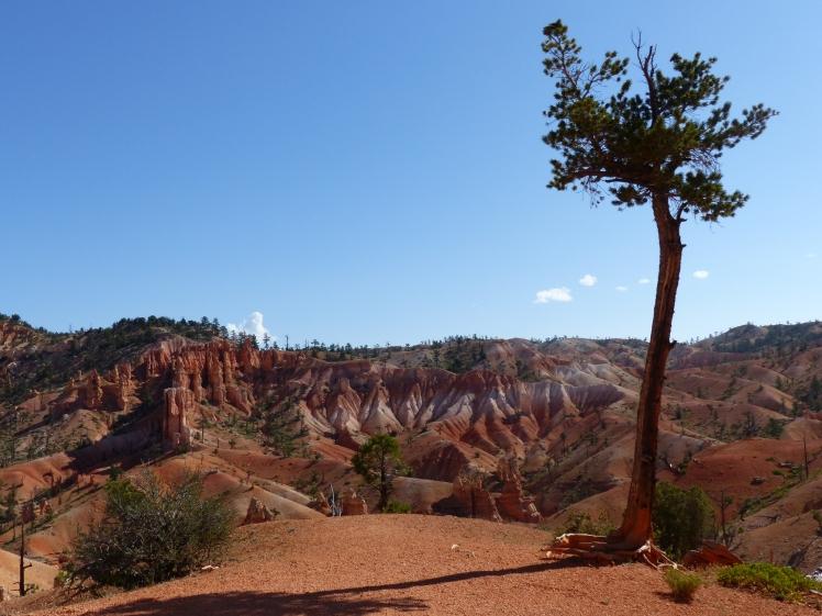 Bryce Canyon_Fairyland Trail12
