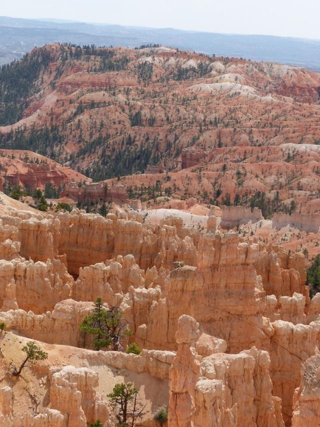 Bryce Canyon_Fairyland Trail27