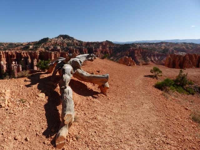 Bryce Canyon_Fairyland Trail7