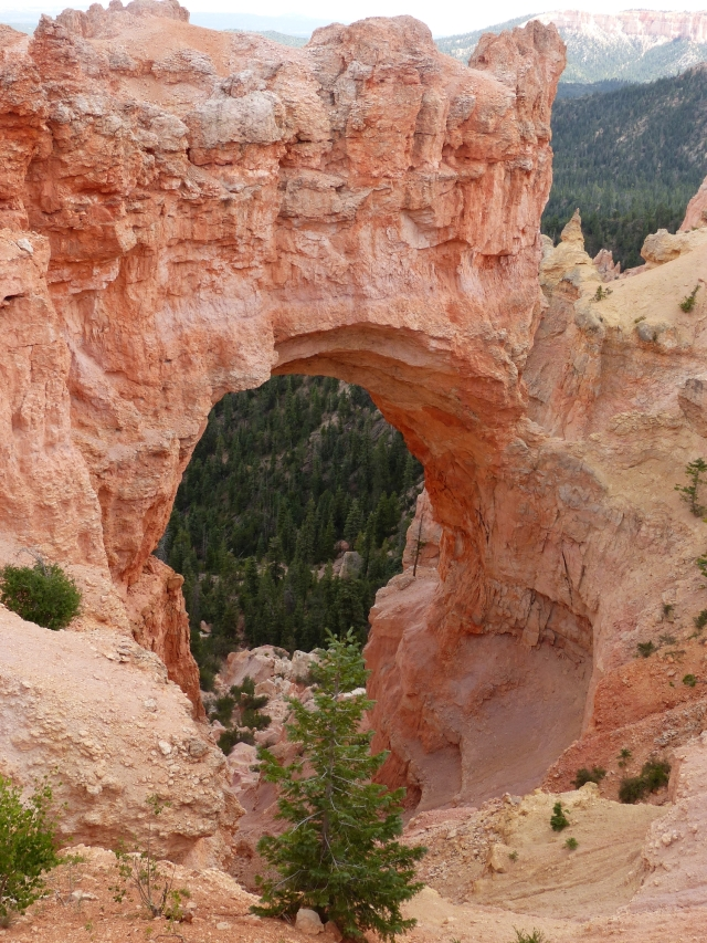 Bryce Canyon_Natural Bridge1