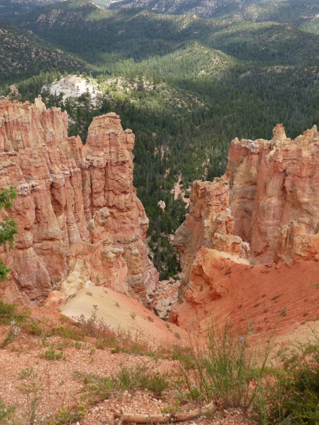 Bryce Canyon_Ponderosa Point1