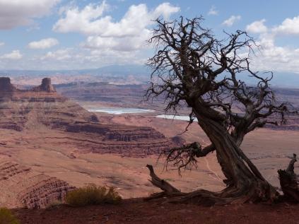 Canyonlands32