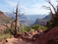 Bright Angel Trail8