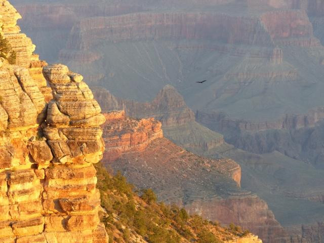 Grand Canyon sunrise11