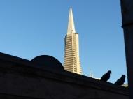 SF2: der Blick aus dem Fenster zeigte Schönes...
