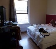SF1: Europa Hotel in San Francisco: aus diesem Zimmer wurden wir verlegt, weil das Klo verstopft war.