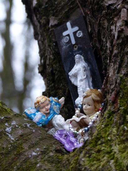 """Wer diesen """"Schrein"""" (siehe auch nächstes Bild) wohl in diesen Baum gesetzt hat? Und warum?"""