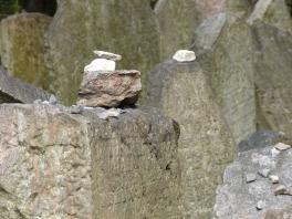 Prag_jüdischer Friedhof_25