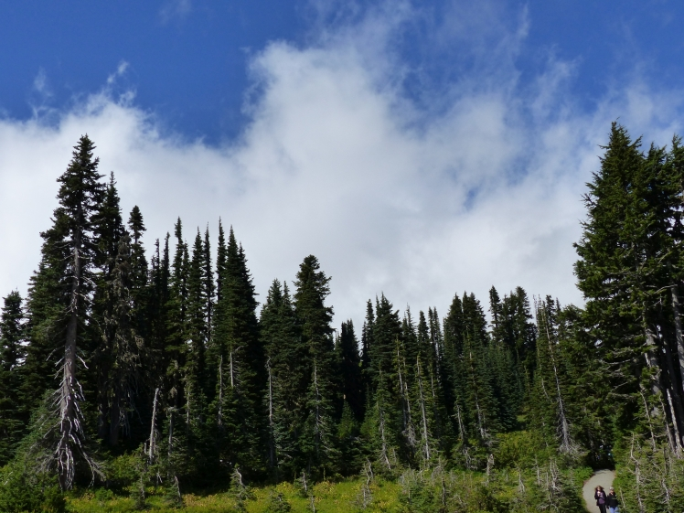 mt-rainier_day1_4