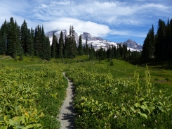 mt-rainier_day2_01_12