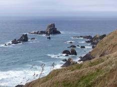 oregon-coast__crescent-beach_10