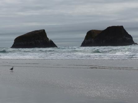 oregon-coast__crescent-beach_20