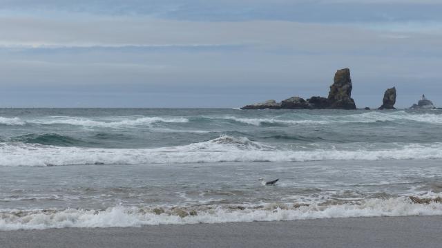 oregon-coast__crescent-beach_36