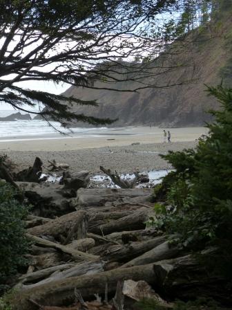 oregon-coast__indian-beach_1