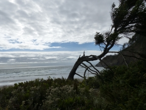 oregon-coast__indian-beach_2