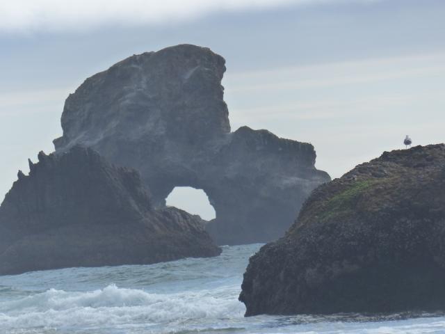 oregon-coast__indian-beach_26