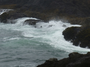 oregon-coast_viewpoints_17