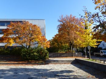 Herbst_Wahltag_19