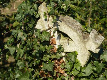 Kensal Green Cemetery_48